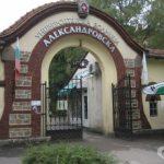 Водещи имунолози и педиатри ще консултират безплатно в София