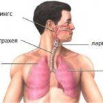 ХОББ е по-опасен от рака на белите дробове