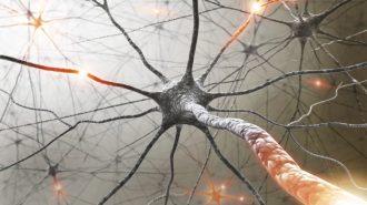 Лечението на множествената склероза е истинско предизвикателство за пациентите, техните семейства и лекуващите ги лекари