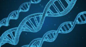Учени откриха причината за стареенето и смъртта