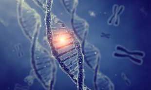 Гени ще помагат за лечение на рак и глухота
