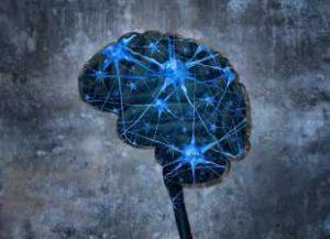 Навиците, които увреждат мозъка