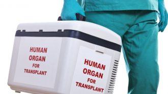Над 1100 българи чакат за трансплантация