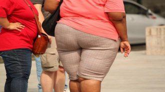 Затлъстяването се дължи на специфичен вид бактерии