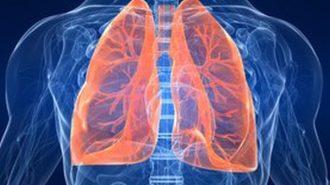 Започва кампания за скринингово изследване на дихателната система