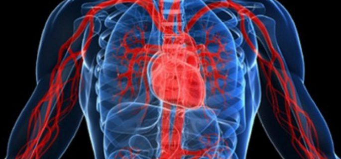 Лекар изброи навиците, които скапват кръвоносните ни съдове