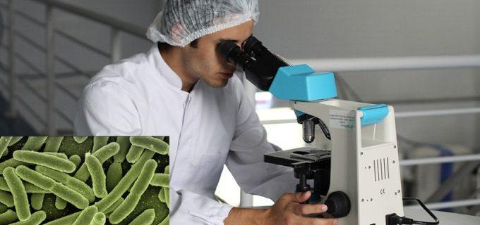 Как да се предпазим от вируси