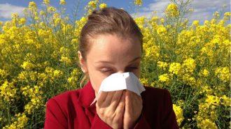 Проф. Тодор Попов: Задухът при алергиите е различен от този при коронавирус
